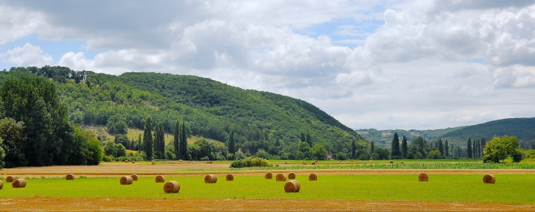 agriculture-country-countryside-849384